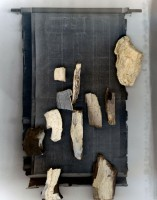 http://www.andreapinheiro.ca/files/gimgs/th-27_Andrea_Pinheiro_Solid_Plans_(petrified wood).jpg