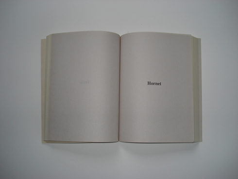 // andrea pinheiro, bomb book